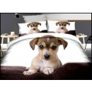wholesale Licensed Products: Bedding set coton 160x200 3 Parts A-2906 -
