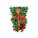 wholesale Garden & DIY store: Planter pot for strawberries