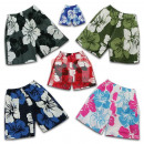 Boardshorts Shorts  Swimwear Surf Beach Shorts