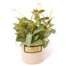 wholesale Garden & DIY store: MINI GREEN PLANT POT IN FABRIC