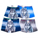 Jungen Boxer, 110-152, Wold Wolf, 5005