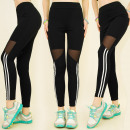wholesale Sports & Leisure: FL487 Impressive  Fitness Leggings, Style Mesh