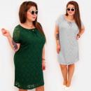 Großhandel Kleider: BI800 Lace Plus Size Damen Kleid bis 54