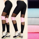 C17155 Sports  Leggings, Jogging, gym, with Mesh