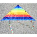 Kite met touw 115 cm