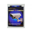 wholesale Security & Surveillance Systems: ZW70 IR camera dummy LED outdoor camera