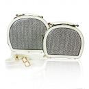 ingrosso Borse & Viaggi: 2 in 1 Ladies Handbags 23028