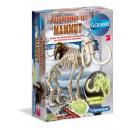 wholesale Experimentation & Research: Galileo - excavation set Mammut fluorescent