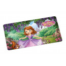 wholesale Party Items: DisneySofia - Board - Garden - 23.5 x 14 cm