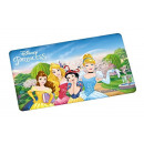 wholesale Licensed Products: DisneyPrincess - Board - Group - 23.5 x 14cm