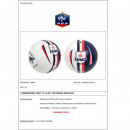 wholesale Balls & Rackets:BALLON FOOTBALL FFF