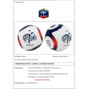 groothandel Ballen & clubs:BALLON VOETBAL FFF