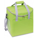 wholesale Cooler Bags: Cooling bag FROSTY, green, gray