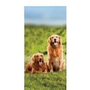 wholesale Bath & Towelling: beach towel 140x70 coton dogs