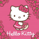 towel 30x30 cotton washcloth Hello Kitty 01