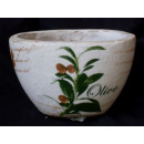 wholesale Plants & Pots:Planter