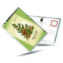 grossiste Cadeaux et papeterie: Carte postale de thé et aussi - Noël