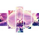 groothandel Klokken & wekkers: MUURKLOK 5  ELEMENTS CANVAS roze orchideeën
