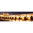 grossiste Images et cadres: PANORAMIQUE IMAGE  MURALE SUR TOILE 120 GOLD BRIDGE