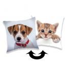 kitty dog sequins pillow