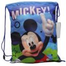 Mickey mouse gym bag