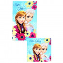 wholesale Towels: frozen hand + face wipe set