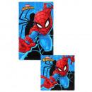 Spiderman kéz+arctörlő szett