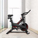 Spinning bike basic