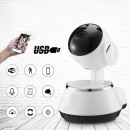 Controlled  telephone, mobile wireless camera