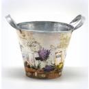 wholesale Garden & DIY store: Pots, flower-eared lavender 14x12,5cm