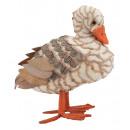 wholesale Plants & Pots: Duck from the grass size 19x18cm.