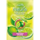 Naturia Body Soap Lime; Versorgung; 300ml