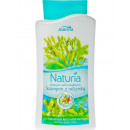 wholesale Haircare: Naturia Shampoo 2in1 500ml Seaweed