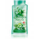 Shampoo nettle and green tea 500ml