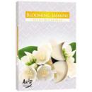 Duftkerzen, Teelicht; Blooming Jasmine 6p.