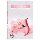 Scented candles, tealight: Wild orchid 6p.
