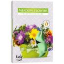 Duftkerzen, Teelicht: Blumenwiese 6p.