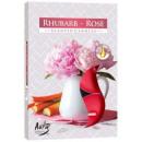 Candele profumate, tealight: Rosa e rabarbaro 6p.