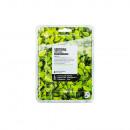 Maske der natürlichen Schönheit, die grünen Tee be