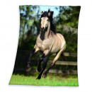 Young Collection: Caballo Fleece -manta