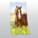 Großhandel Lizenzartikel: Young Collection: Pferd Velourstuch