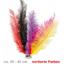 wholesale Toys: Ostrich feathers,  assorted colors, about 35-45 cm