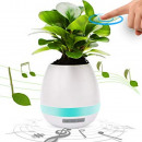 Musical flower pot