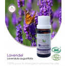Lavendel etherisch olie (bio) 10 ml