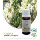 Cajeput etherisch olie (bio) 10 ml