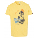 Men's T-Shirt Cable Beach, yellow, assorted si