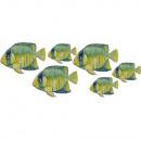 grossiste Stickers mureaux: Poissons Stickers  muraux - Ensemble de 6 pièces