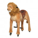 Lion Shimba Medium / Large