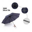 Parapluie automatique fermé et ouvert