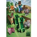 Minecraft polarny Kołdra 130*170 cm